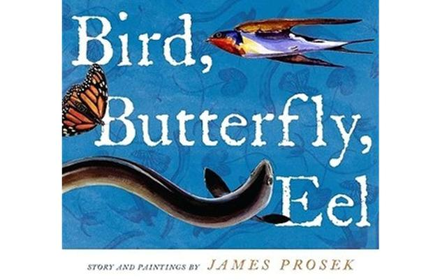Read-Aloud: Bird, Butterfly, Eel by James Prosek
