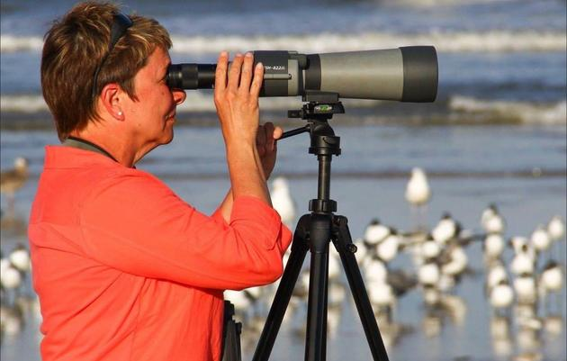 Better Know a Birder - Sandy Berger
