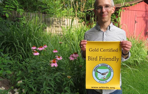 Creating a Bird-Friendly Yard
