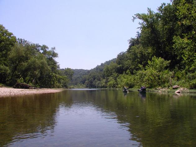 Buffalo National River Designated Important Bird Area