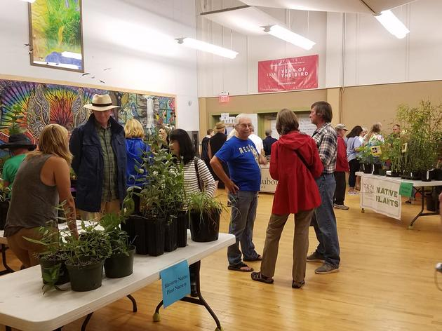 Recap: 2018 Fall Native Plant Sale