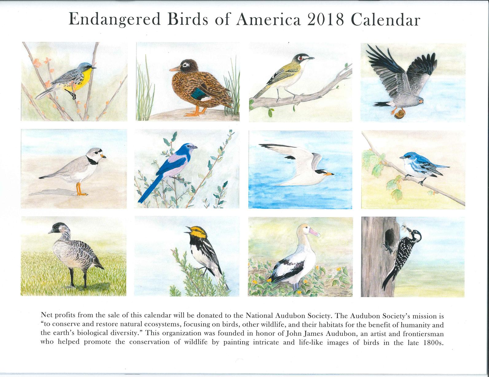2018 Endangered Birds of America Calendar