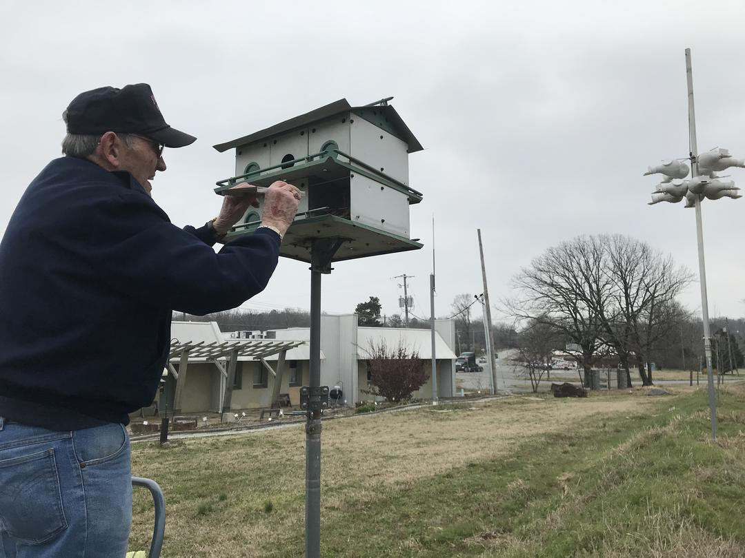Purple Martin Volunteer Andy Miler